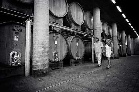 italian-wines-tour